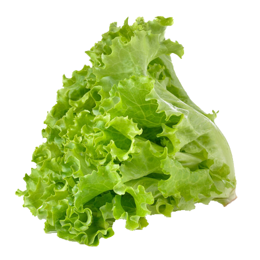 Picture of Lettuce Leaf - 100 gm