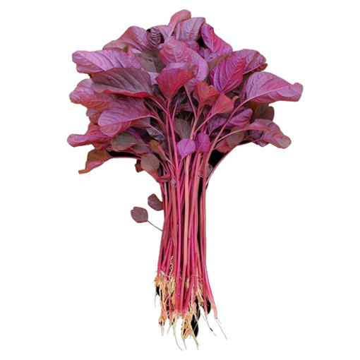 Picture of Red Spinach - 1 Bundle