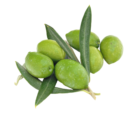 Picture of Green Olives (Jolpai) - 1 kg